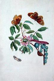 engraving1.jpg