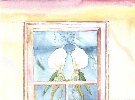 lungslikeorchids.jpg