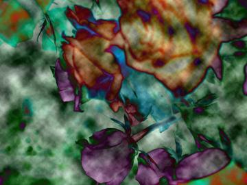 roses6.jpg